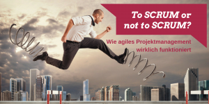 Scrum Schulung, Scrum Seminar, Scrum Training München, agiles Projektmanagement